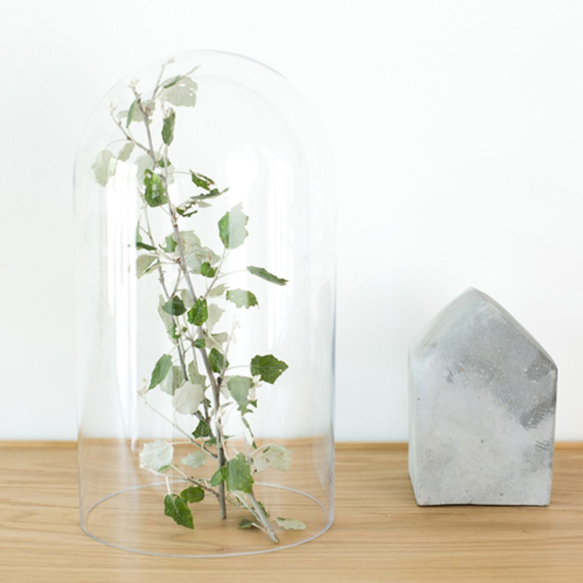 Cloche en verre transparent House Doctor
